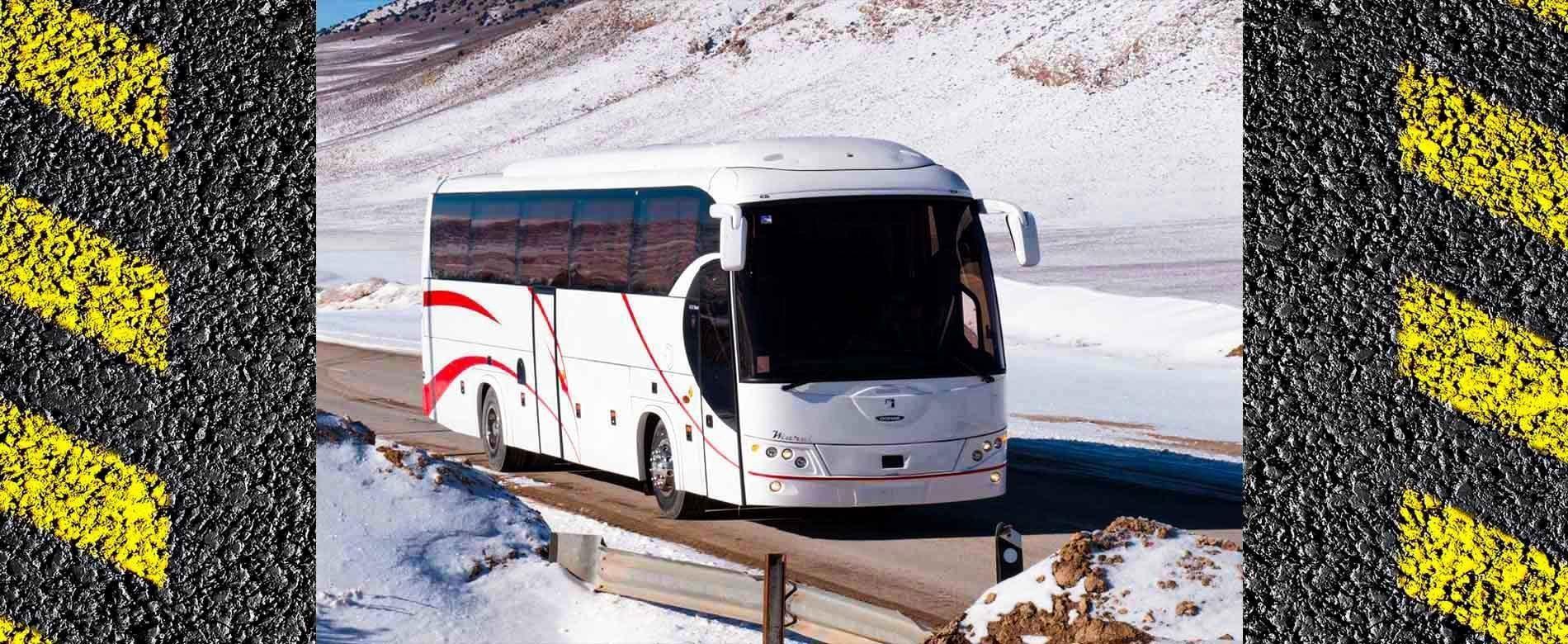25-passenger vip bus
