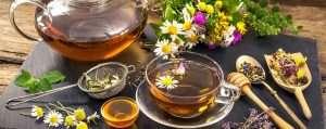 energizer herbal tea